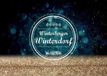 Vakantiehuisje Winterberg - kerst en oud en nieuw