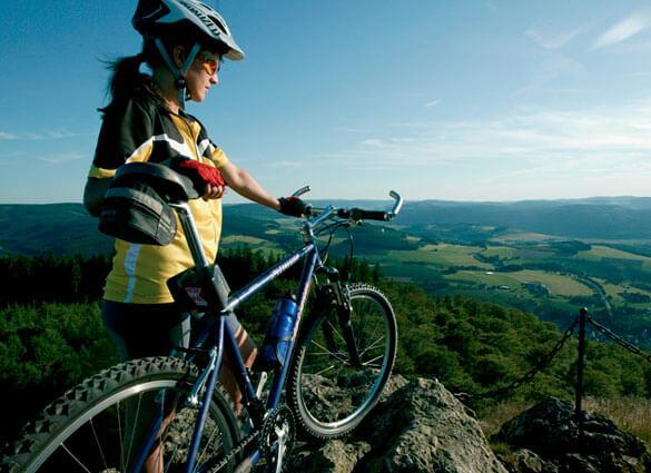 Vakantiehuisje Winterberg - Mountainbiken